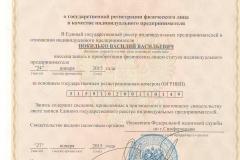 Свидетельство регистрации ИП